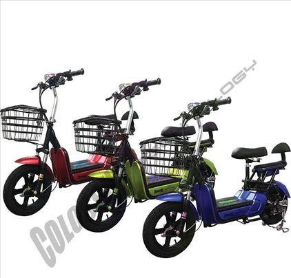 Električni bicikl - više modela