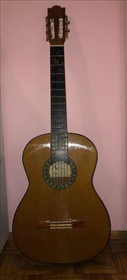 Gitara Aster GC-15
