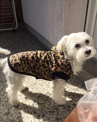 Duks za male pse ~ Animal print - topao