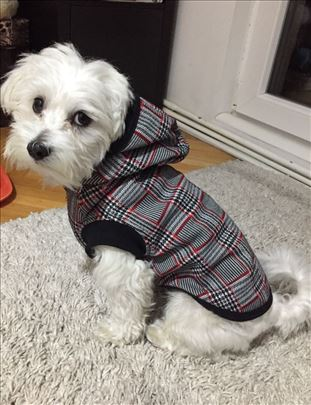 Duks za pse - karirani - topao i kvalitetan