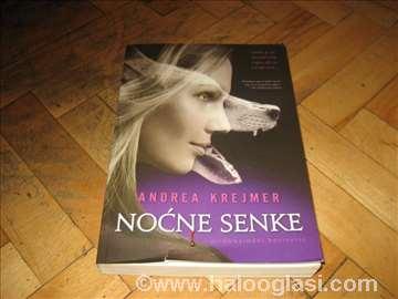 Knjiga noćne senke