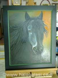 Crni konj 1 - ulje na platnu