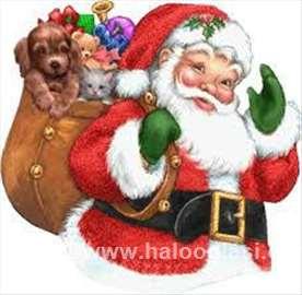 Deda Mraz Ćira