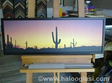 Zalazak sunca u pustinji