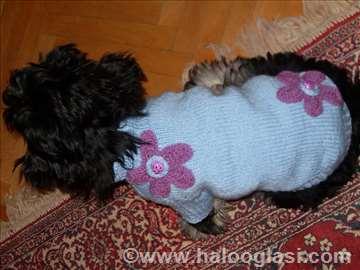 Džemperić za psa