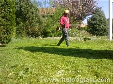 Košenje trave i seča stabala