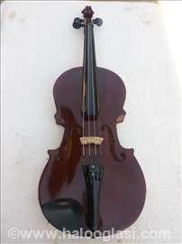 Damska viola
