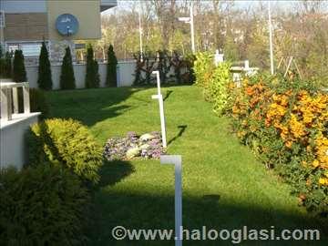Hortikulturno uređenje zelenih površina