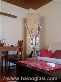 Stan na dan-Apartman Novi Sad-za 3 do 4 osobe