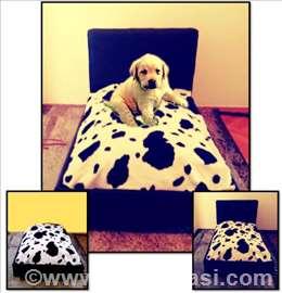 Krevetić za psa