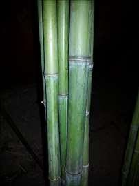 Štapovi od bambusa za dekoraciju