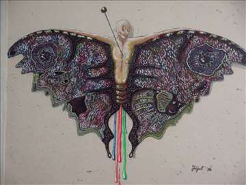 Akvarel 'Papillon'