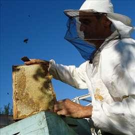 Med bagrem, lipa, šumski, reg. pčelinjak