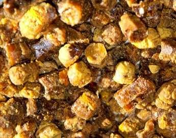 Fermentisani polen - Perga