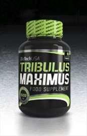 Tribulus Maximus - Biotech -- novo