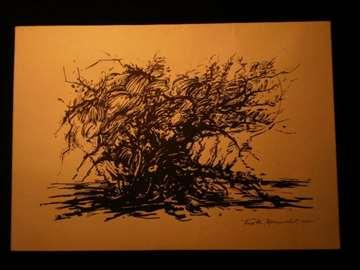 Slika - Stablo (446)