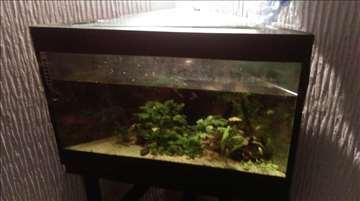 Ugaoni akvarijum - povoljno