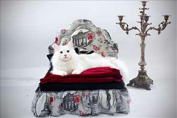Krevetići za pse i mačke