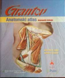 GRANTOV anatomski atlas, NOVO