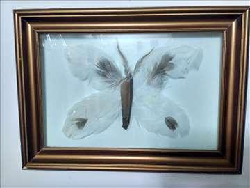 Leptir od perja