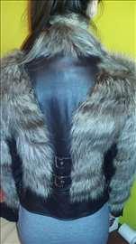 Kožna jakna-rakun krzno