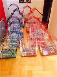 Kavezi za papagaje