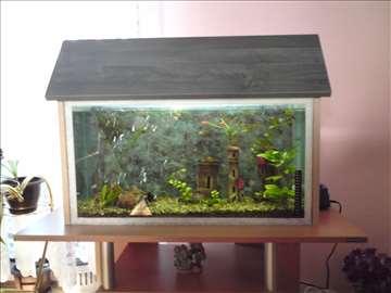 krov za akvarijum