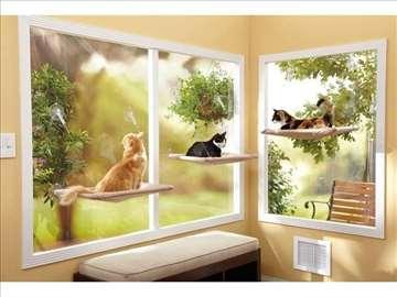 Krevet za mačke, na prozoru