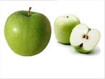 Greni Smit jabuka, sadnice