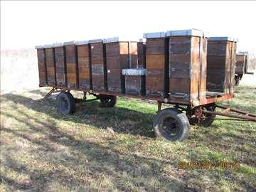 Prodajem 2 prikolice sa 40 košnica sa pčelama