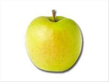 Zlatni Delišes jabuka, sadnice