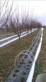 Plastenici ( tunelski ) za jagode i niske sadnice