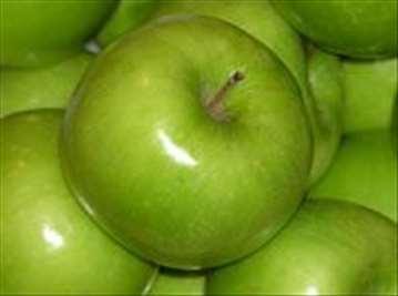 Voćne sadnice jabuke Čelendžer