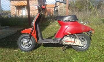 Yamaha Gatoson L 50