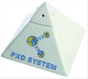 PXD biopiramida