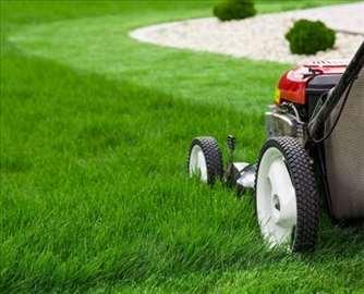 Košenje trave, žive ograde i održavanje dvorišta