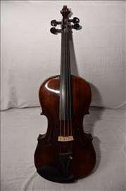 Viola 38