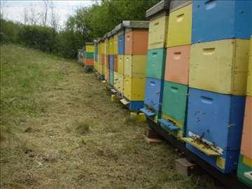 Pčelinja društva na LR ramovima