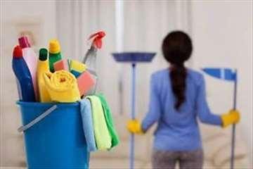 Profesionalno čišćenje stambenih objekta