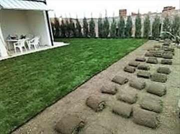Tepih trava