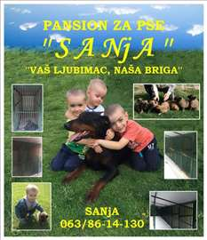 Pansion za pse Sanja - Novi Sad, Kać