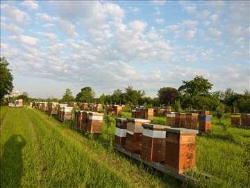 Pčelinjak na prodaju