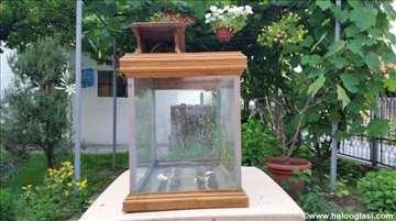Akvarijum sa drvenim krovom