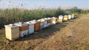 Košnice-pčelinja društva