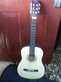 Gitara sa futrolom