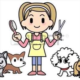 Šišanje i čuvanje pasa
