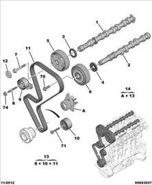 Citroen C4 I 1.4B 16V Bregasta Osovina Usisna, NOV