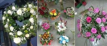Cvećara Kamelija Prokuplje