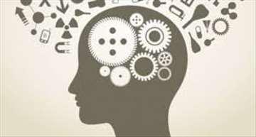 Izrada radova iz oblasti psihologije i humanistike