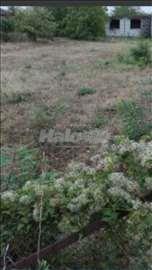 Prodajem ograđeno zemljište od 12 ari.